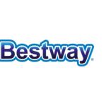 karkasinis-lauko-baseinas-bestway (3)
